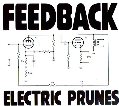 the Electric Prunes ~ 2006 ~ Feedback