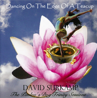 David Surkamp ~ 2007 ~ Dancing On The Edge Of A Teacup