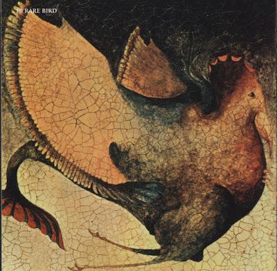 Rare Bird ~ 1969 ~ Rare Bird original lp's cover