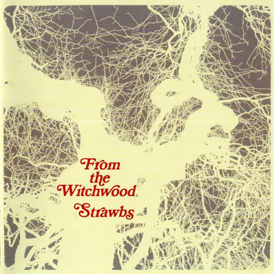 the Strawbs ~ 1971 ~ From The Witchwood