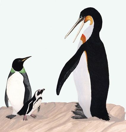 giant-penguin-picture