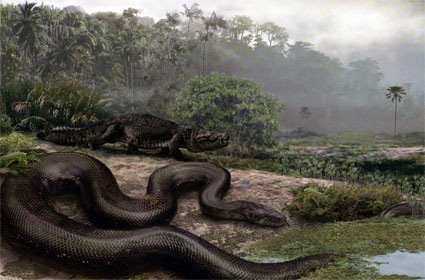 world's-biggest-snake
