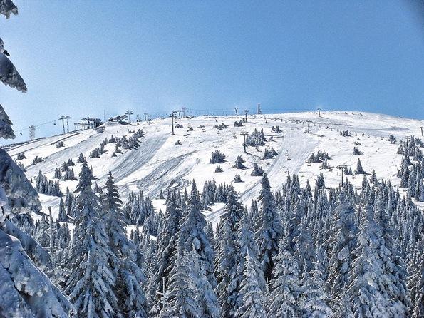 Pančić's Peak during winter
