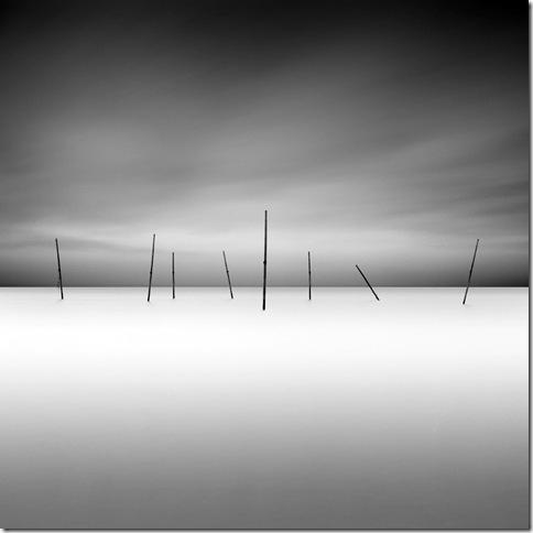 David Burdemy - 41_1
