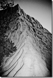 Torrey Pines- b&w rocks-2