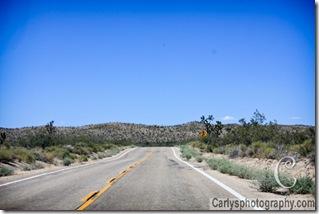 Mojave Desert-22