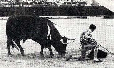Belmonte de rodillas al toro