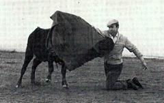 Pepe Luis Vazquez de rodillas Tentadero 001