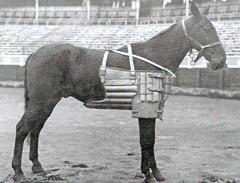 Peto de prueba de 1917 001
