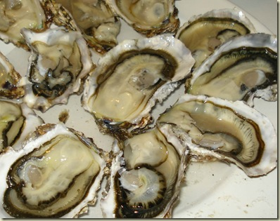 oysters2_1_1