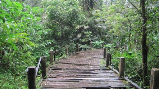 bridge at cibeureum