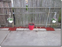 garden etc 048