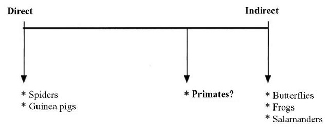 The differences between direct and indirect forms of ontogenetic development, taken to be two extremes of a continuum of possibilities. Direct development is more or less synonymous with growth. Indirect development, which is the defining feature of metamorphosis, involves radical transformations at different levels of organization, including the behavioral level. It has been suggested that the ontogenetic development of non-metamorphic species such as primates may in fact be better characterized as lying closer to the indirect end of the continuum. In developmental psychology, there is an ongoing debate about whether infants are born with innate cognitive structures for acquiring physical knowledge and thus that subsequent development is analogous to the growth of these structures. Those who oppose this view argue that such structures are emergent properties of the developing cognitive system. Thus, the first view is consonant with the direct form of development and the latter with its indirect counterpart.