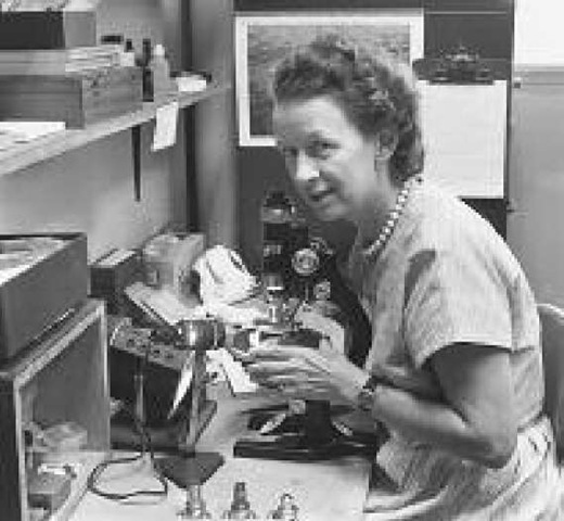 Alice Weeks conducts research using a reflecting petrographic microscope in 1958