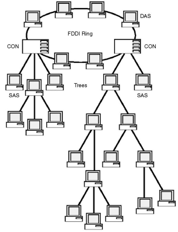 With FDDI, a dual ring of trees can be used to create a hierarchical topology to enhance network reliability.