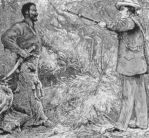 introduction to nat turner Essays and criticism on william styron's the confessions of nat turner - critical evaluation.