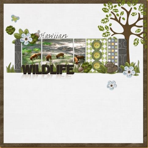 Hawiian-Wildlifexsmall