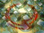 Lidské požáry hasí zvířata - DC Bublina