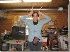 female antlers