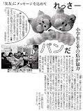 2008年2月13日東京新聞.jpeg