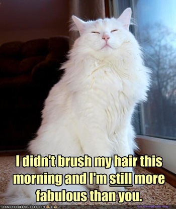funny-pictures-your-cat-is-more-fabulous-than-you