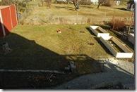 köksträdgård början 2