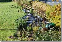 höststädning av trädgård