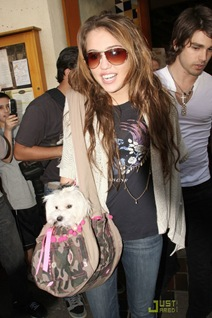 miley-cyrus-justin-gaston-market-city-caffe-02