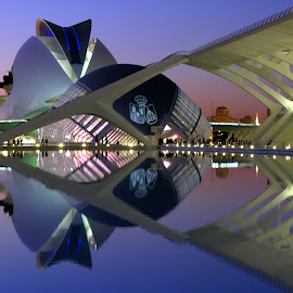Vision in Valencia by Jeff Grim - Buildings & Architecture Other Exteriors ( spain valencia calatrava architecture reflection )