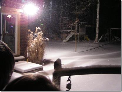 Glistening snow wonder