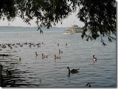 Bayfront Park 2