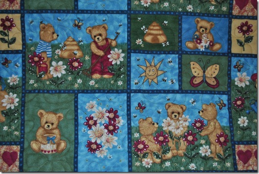 Flannel Baby Quilt 002
