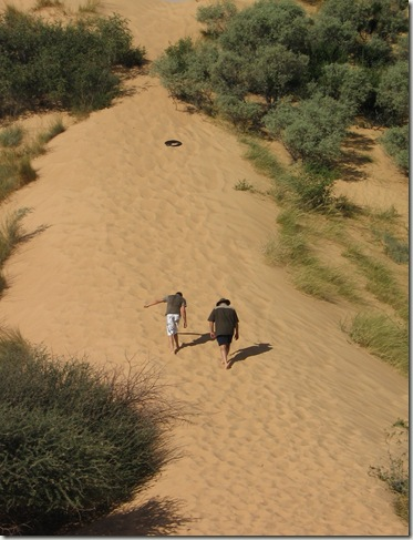 Dune Boarding at Witsand Kalahari