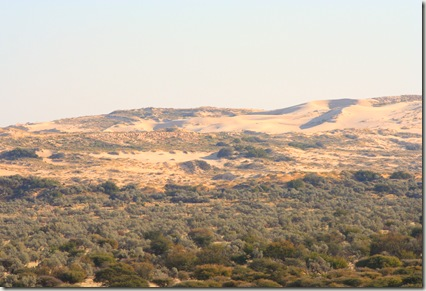 View from viewpoint of Roaring Dunes of Witsand Kalahari