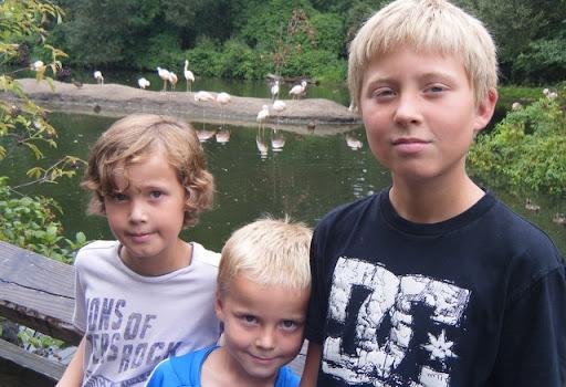 barna på Zoo