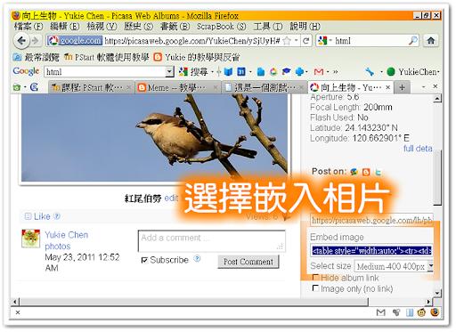 在 PicasaWeb 選擇嵌入相片