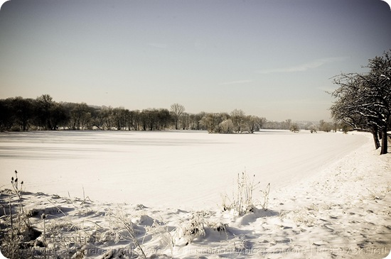 Winter Wonderland Weimar 2010 by MeetaK