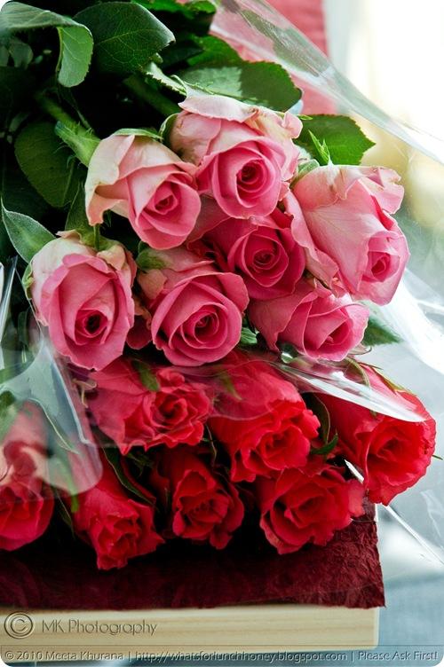 Pink Roses (01) MeetaK