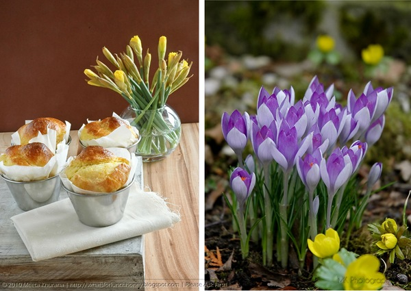 Brioche Crocus Diptych (01) by MeetaK