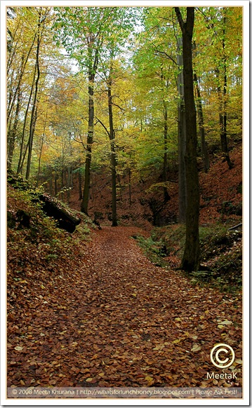 Autumn-Wartburg (02) by MeetaK
