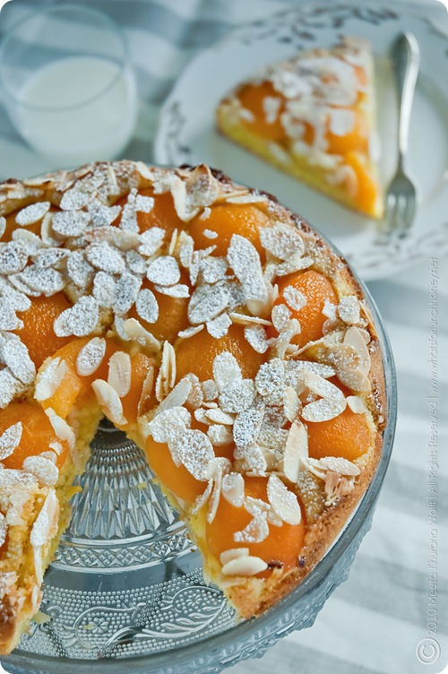 Apricot Saffron Cake (0011) by MeetaK
