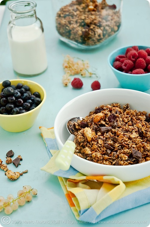 Granola Berry Nut Chocolate Intens (0006) by MeetaK