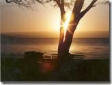 sun-set12