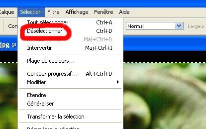 [TUTO] Faire un cadre dégradé avec Photoshop Tuto7