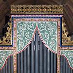 Interior organ.jpg