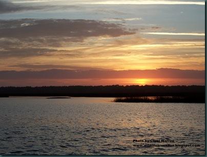 Sunset ICW near Pine island