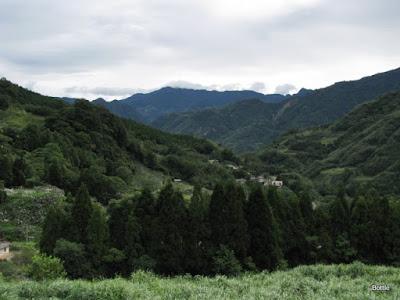 2009-1010-082941b.JPG
