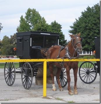 cu amish wagon