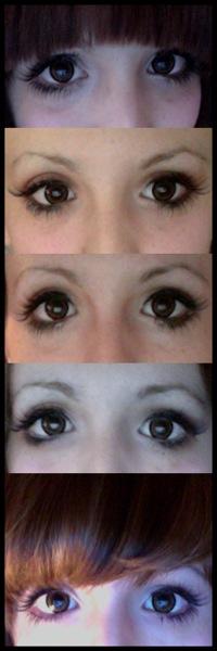 Make-up evolution