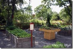 Möjligheternas-trädgård3
